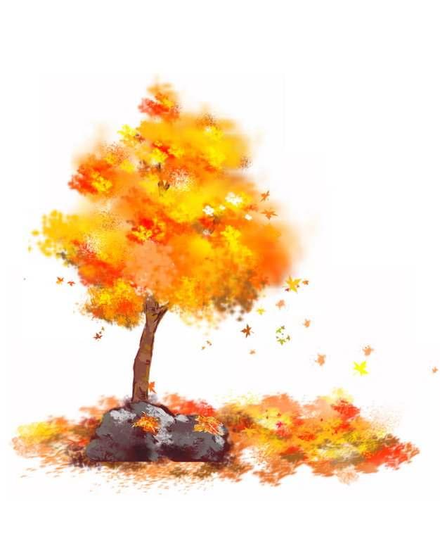 秋天变红变黄的大树和落叶水彩插画679719png图片素材