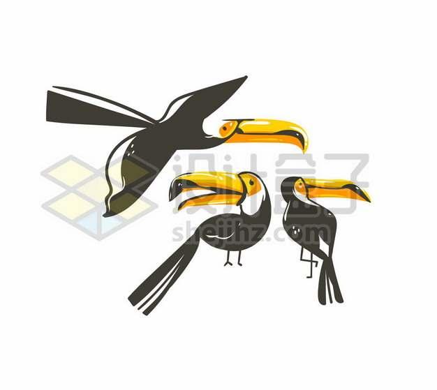 三款手绘风格巨嘴鸟鵎鵼插画558882图片免抠矢量素材
