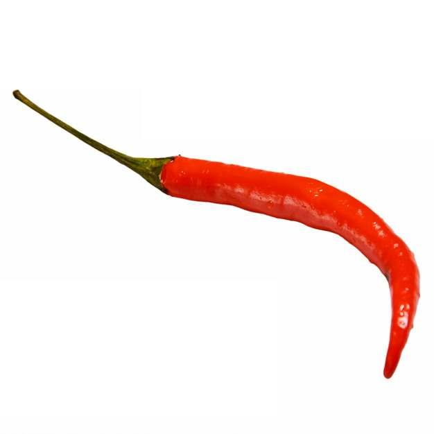 一根小辣椒红辣椒小米椒美味调料蔬菜349518图片素材