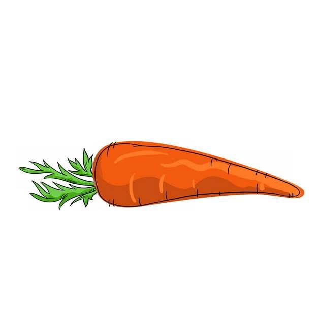 手绘风格胡萝卜447365免抠图片素材