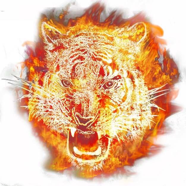 创意抽象火焰组成的老虎头687102png图片素材