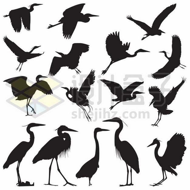 16款鹤鹳鹮鸨琵鹭涉禽水鸟剪影882531eps矢量图片素材