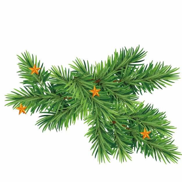五角星装饰的圣诞节松针树叶701532矢量图片素材