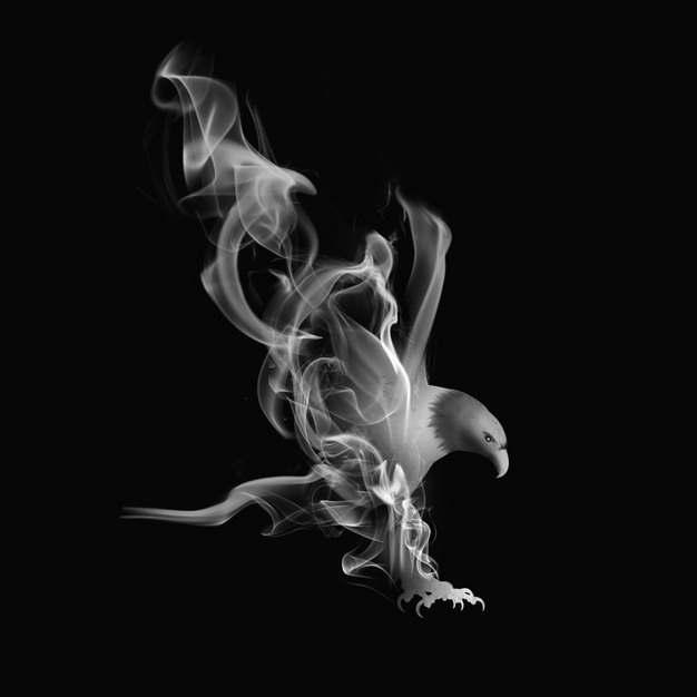 抽象白烟冒烟效果组成了老鹰图案471213png图片素材
