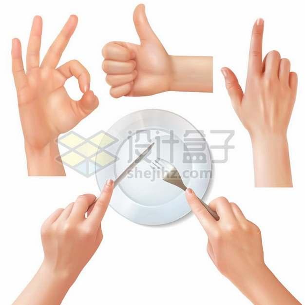 OK手势竖起大拇指点赞单指操作手势和使用刀叉的正确方法351562矢量图片免抠素材