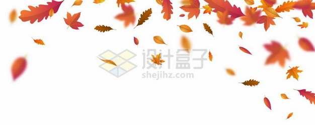 金秋深秋橙色枫叶飘落装饰效果216396eps矢量图片素材