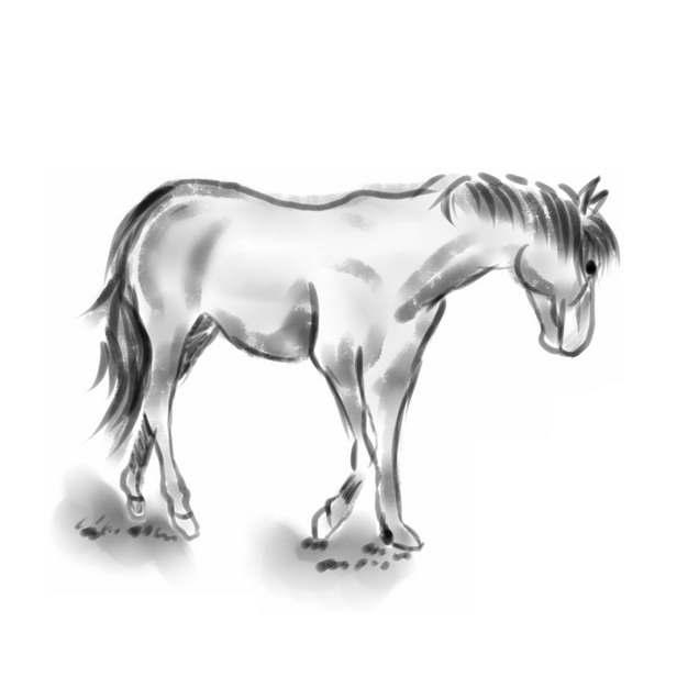 黑色水墨画低头的骏马手绘插画399209png图片素材