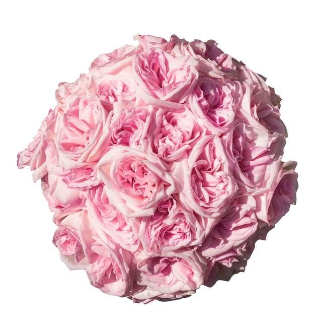 一束粉色玫瑰花432544png图片素材
