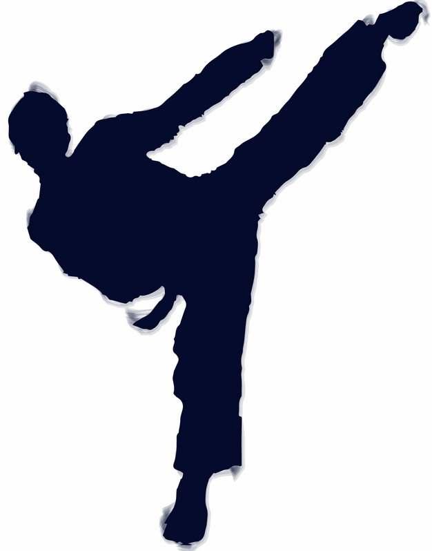 武术跆拳道动作人物剪影188101图片免抠素材