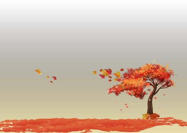 深秋时节变红的大树和一地的红色树叶131889png图片素材