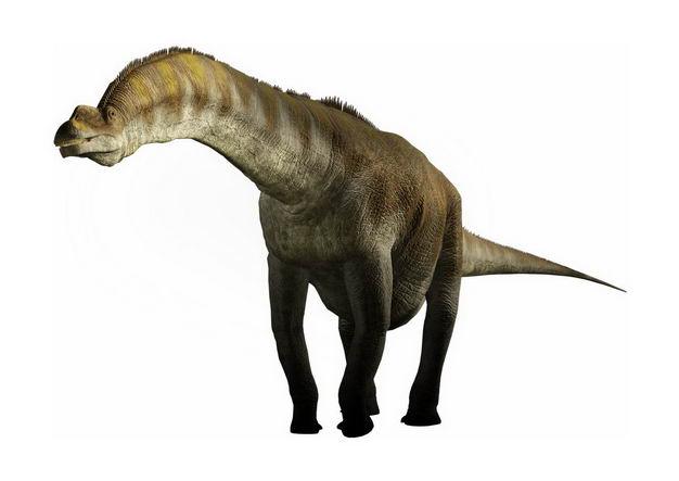 世界上最大的恐龙阿根廷龙蜥脚类恐龙泰坦巨龙复原图9266955png图片免抠素材