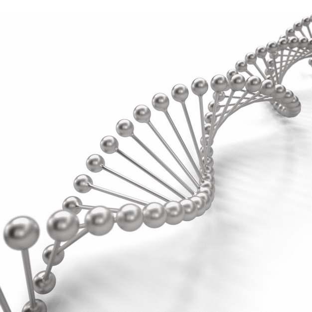 金属银色3D立体风格DNA双螺旋结构702184png图片素材