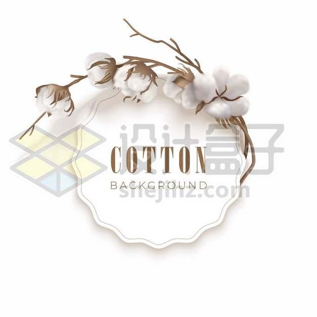 棉花枝条组成的标题框文本框172118图片素材