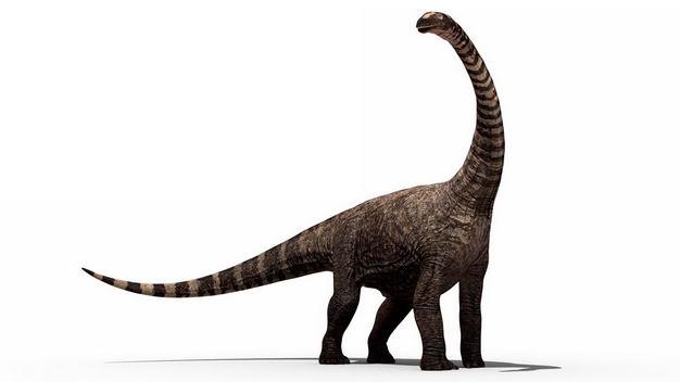 腕龙雷龙泰坦巨龙恐龙复原图6676381png图片免抠素材