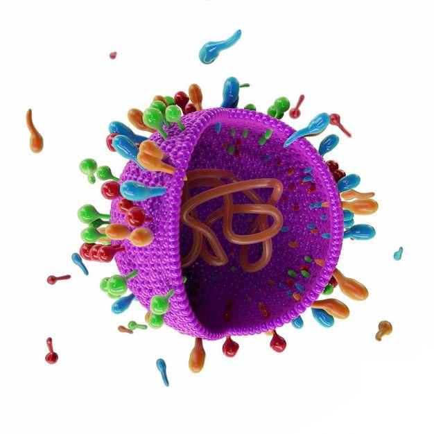 3D立体风格玫红色卡通冠状病毒内部DNA结构233805png图片素材