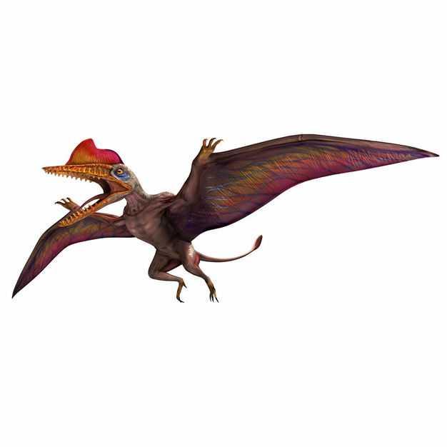 达尔文翼龙侏罗纪翼手龙复原图9078633png图片免抠素材
