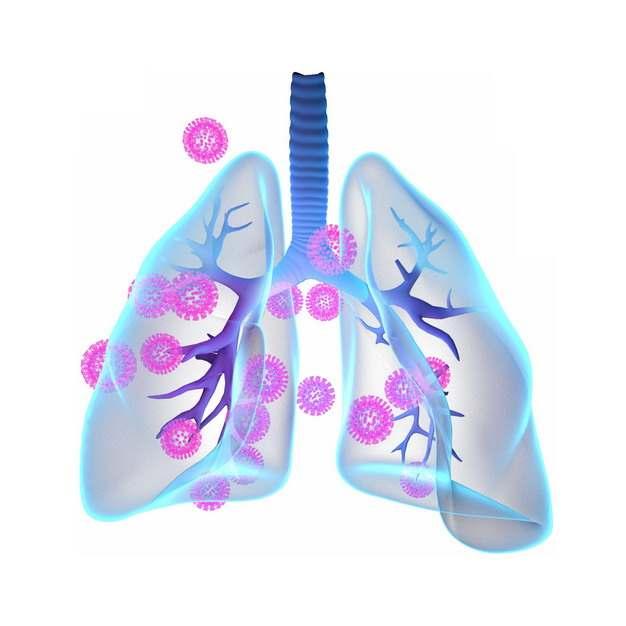 3D立体风格蓝色半透明肺部和粉色新型冠状病毒358000png图片素材