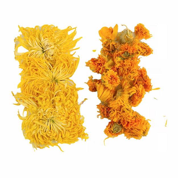 两种金丝皇菊大朵贡菊等干菊花茶589331png图片免抠素材