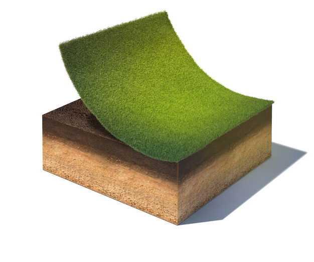 3D立体草坪底层土壤结构987750png免抠图片素材