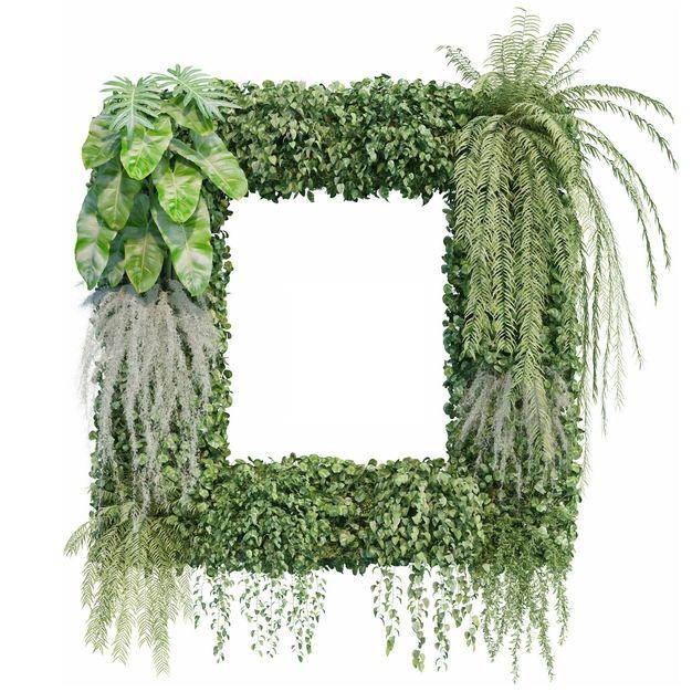3D渲染的各种绿植观赏植物组成的方框106200免抠图片素材 生物自然-第1张
