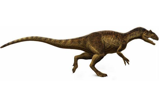 霸王龙暴龙科恐龙复原图7643493png图片免抠素材