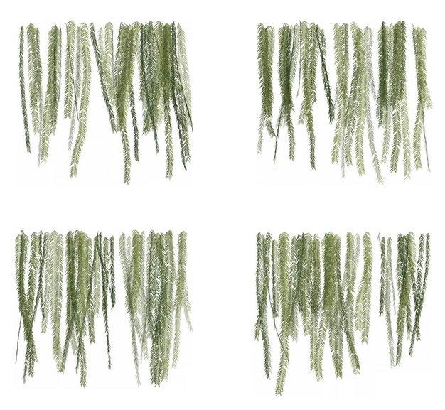 四款3D渲染的蕨类植物的树叶绿叶子783152免抠图片素材