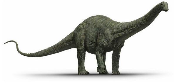 雷龙蜥脚类恐龙复原图3906582png图片免抠素材 生物自然-第1张