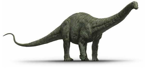 雷龙蜥脚类恐龙复原图3906582png图片免抠素材