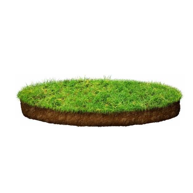 3D立体风格绿色草坪草坪247120PSD图片免抠素材