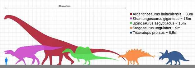 腕龙鸭嘴龙棘龙剑龙三角龙等恐龙和人类大小对比图8230285png图片免抠素材