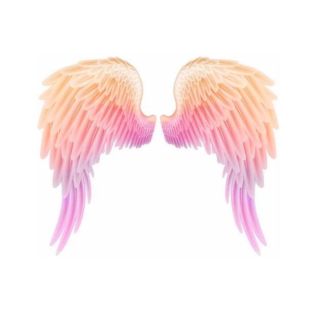 红黄色渐变色天使翅膀525194png图片素材