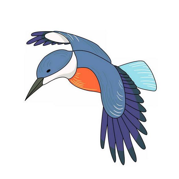 飞行中的卡通彩色蜂鸟小鸟800618png图片免抠素材 生物自然-第1张