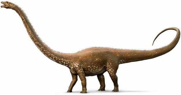 梁龙侏罗纪植食性恐龙复原图3181641png图片免抠素材 生物自然-第1张
