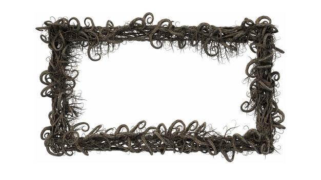 创意干枯的树枝藤蔓缠绕组成的长方形边框338939免抠图片素材 生物自然-第1张