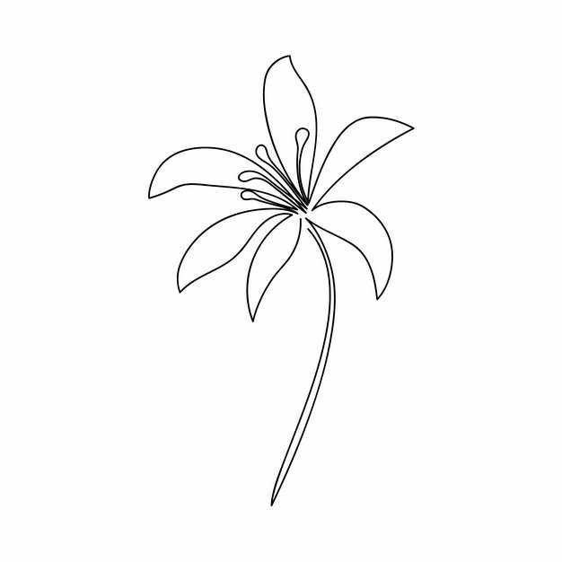 一根线条盛开的花朵手绘插画简笔画911880png图片素材