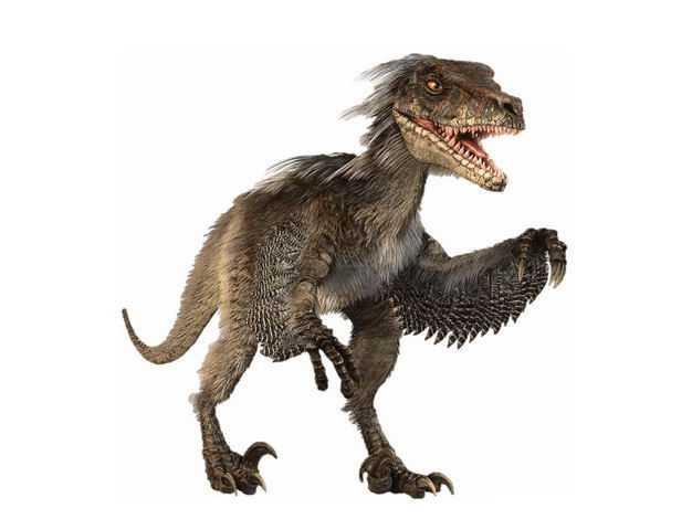 伶盗龙晚白垩纪驰龙科恐龙复原图3547038png图片免抠素材