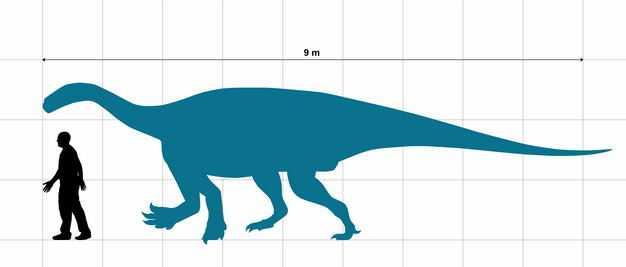 巨椎龙早侏罗纪植食性恐龙和人类大小对比图4179901png图片免抠素材