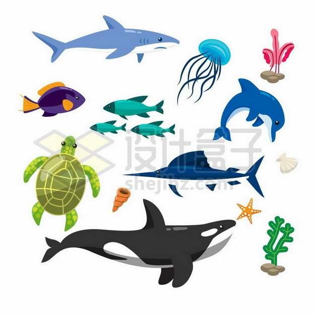 大白鲨水母鱼群海豚海龟虎鲸珊瑚等卡通海洋动物479471png矢量图片素材