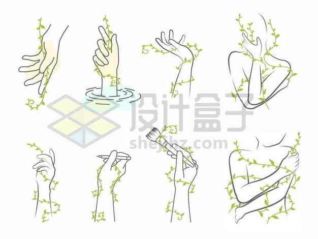八款抽象风格线条手绘双手和绿色藤蔓625527图片素材
