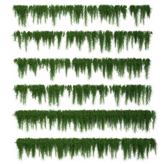 六款3D渲染的绿色藤蔓观叶植物盆栽绿植观赏植物3872953png图片免抠素材 生物自然-第1张
