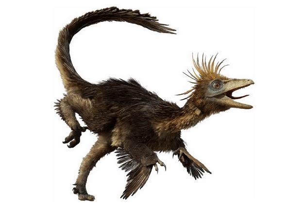 白垩纪晚期伤齿龙肉食性恐龙复原图3065052png图片免抠素材