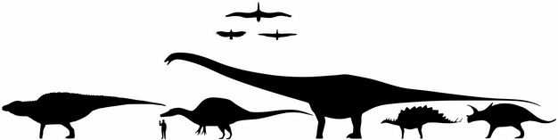 翼龙三角龙剑龙马门溪龙帆棘龙等常见恐龙和人类大小对比图4239885png图片免抠素材