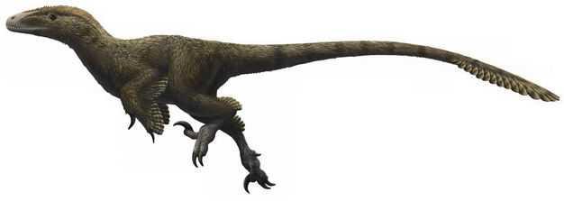 犹他盗龙早白垩纪驰龙科恐龙复原图8297279png图片免抠素材