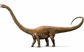恐龙复原图片素材