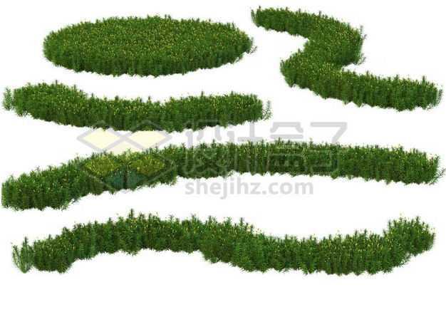 各种形状的绿色花圃公园观赏植物景观植物1787478图片免抠素材