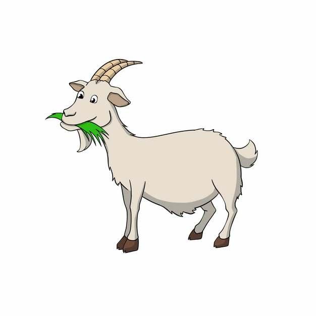 正在吃青草的卡通山羊手绘插画4793742png图片免抠素材
