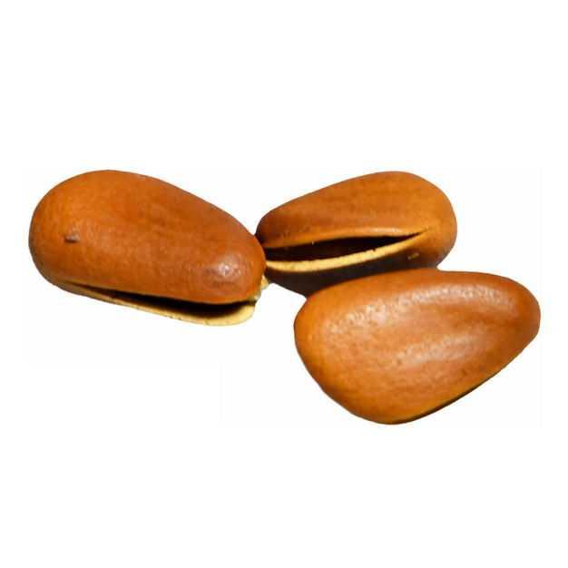 三颗开口松子美味坚果零食3573994png图片免抠素材