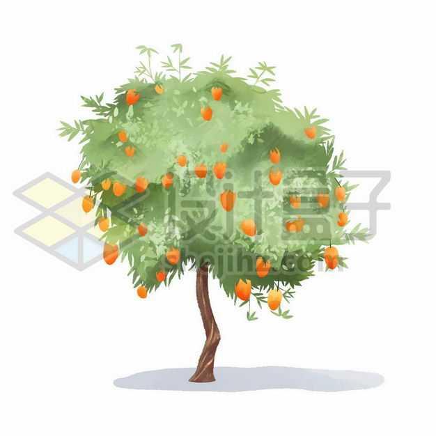 大树上长出了很多苹果手绘插画8404466png图片免抠素材