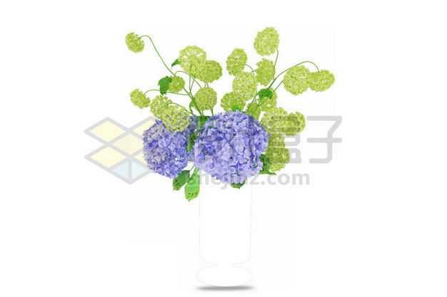 紫色绿色绣球花卉花朵鲜花室内观赏植物9348884PSD图片免抠素材