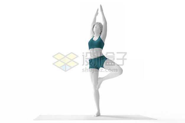 3D立体站在瑜伽垫上金鸡独立高举双手瑜伽动作瑜伽姿势人体模型1153080图片免抠素材
